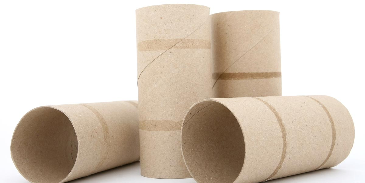toilet-paper-roll-crafts-fb